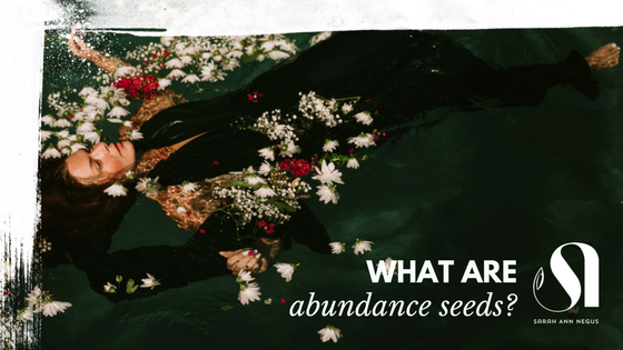 what are abundance seeds?